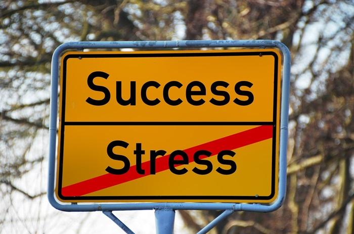 Gründung einer B.V. in den Niederlanden: Der Weg zum Erfolg