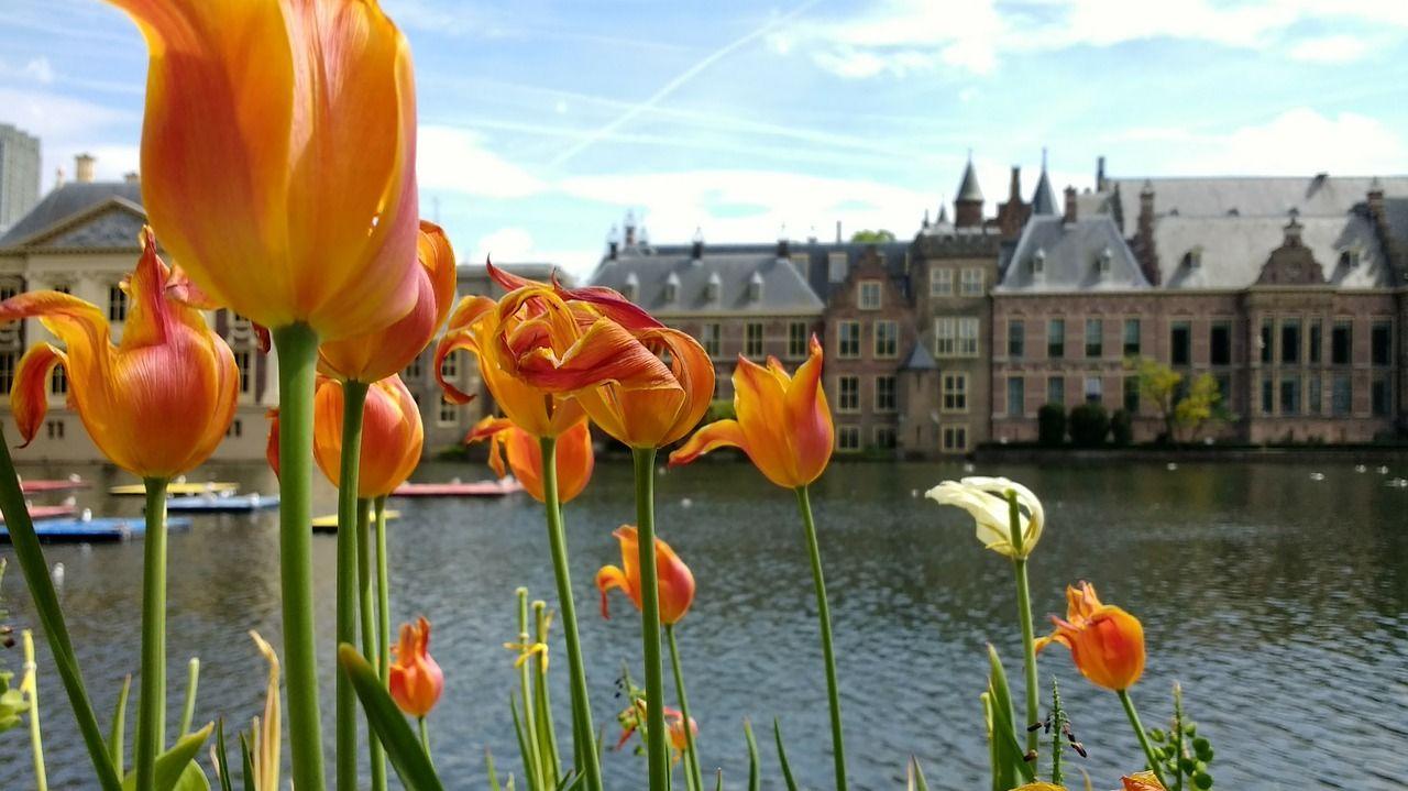 Gemeente Den Haag helpt Haagse ondernemers op Duitse markt