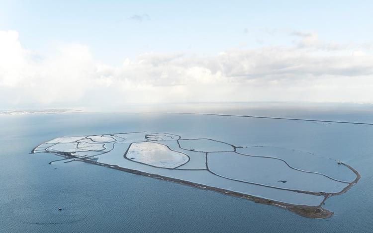 """Neuer niederländischer Nationalpark """"Nieuw Land"""" eröffnet"""