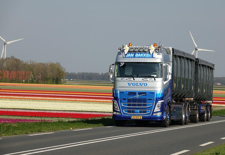 Competenties in Nederlandse en Duitse vacatures: in hoeverre komen ze overeen?