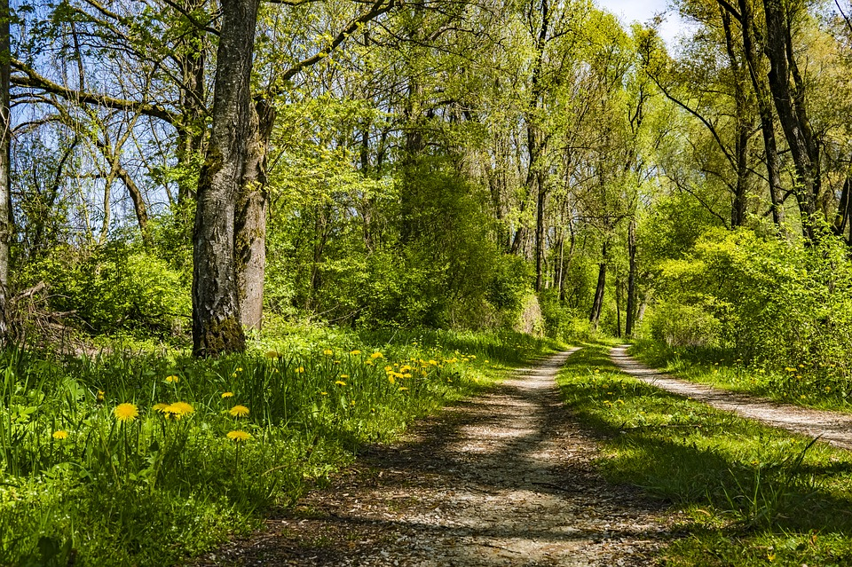 Nederlanders graag naar Noordrijn-Westfalen voor natuur en sportieve activiteiten