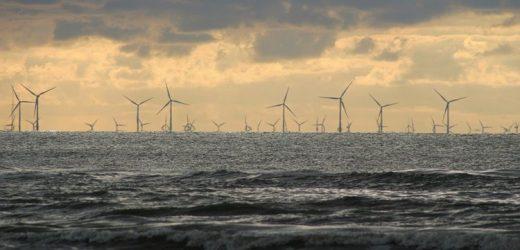 """Shell & Co starten grünes Wasserstoffprojekt """"NortH2"""""""
