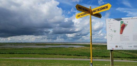 #wattbesünners – grenzübergreifende Sommerkampagne