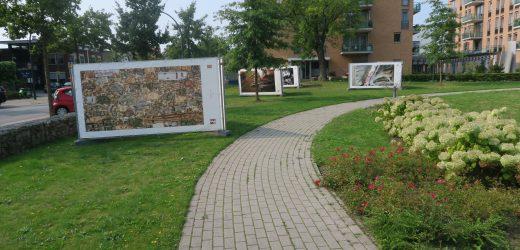 Nederlandse en Duitse kunstenaars werken samen in grensoverschrijdend kunstproject