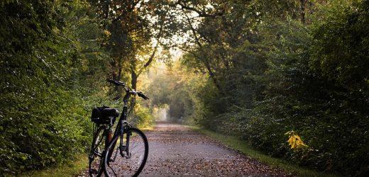 Gemeente Dinkelland investeert in grensoverschrijdende fiets- en wandelroute