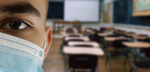 Grundschulen und Kitas in den Niederlanden öffnen wieder