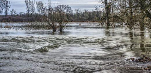 Klimafolgen für grenzüberschreitende Wasserwirtschaft