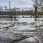 Streitkräfte Niederlande Hochwassereinsatz
