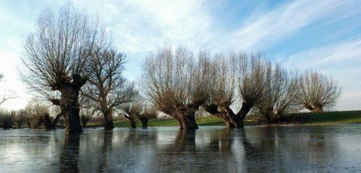 10 Jahre Grenzüberschreitende Plattform für Regionale Wasserwirtschaft
