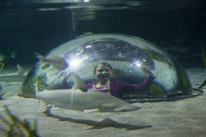 Unterwasser-Kuppel